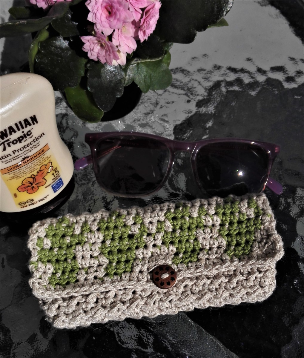 Sunglasses case with cactus