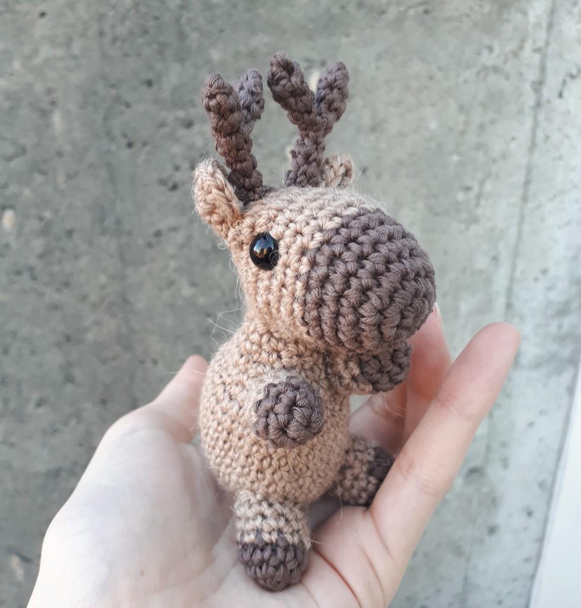 Reinsdyr - Reindeer